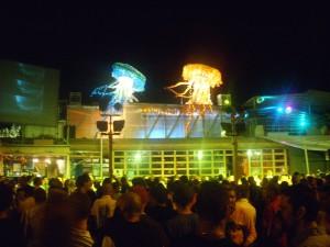 versilia night