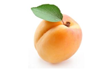 Albicocca: dalle origini agli usi alimentari!
